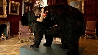 Treize jours dans un ours, à manger comme un le plantigrade  (France 3 Culturebox)