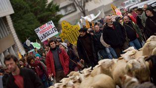 Une manifestation d'éleveurs organisée en décembre 2014 à Privas (Ardèche). (CITIZENSIDE/CHRISTOPHE ESTASSY)