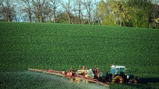 Un agriculteur pulvérise un engrais chimique sur son champ de blé (illustration). (REMY GABALDA / AFP)