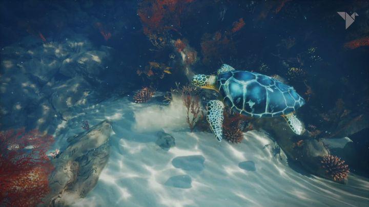 """MK2 + nous glisse dans la peau d'une tortue de mer avec """"Paradise Lost"""". (MK2 +)"""