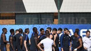 Les joueurs de l'équipe de France à l'entraînement, à Marseille, le 6 juillet 2016. (FRANCK FIFE / AFP)