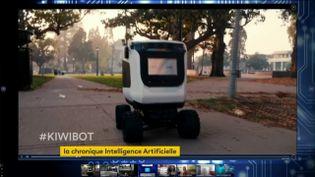 Les Kiwibot sont en fait télécommandés par des êtres humains (FRANCEINFO)