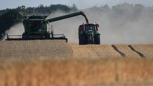 Un champ de blé moissonnéàVieuvicq (Eure-et-Loir), le 23 juillet 2019. (JEAN-FRANCOIS MONIER / AFP)
