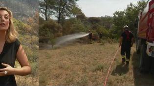 Vaucluse : 100 hectares partis en fumée dans un incendie (FRANCEINFO)