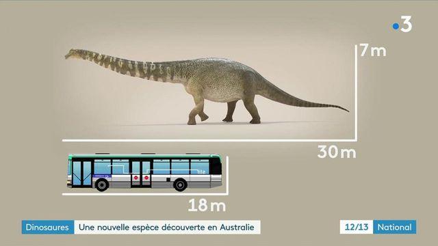 Dinosaures : découverte d'une nouvelle espèce, l'Australotitan