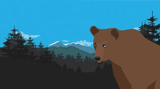 L'ours Pyros au pied des Pyrénées.Illustration. (PASCALE BOUDEVILLE / FRANCETV INFO)