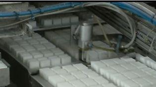 L'industriel Saint-Louis veut fermer deux de ses quatre sucreries en France à partir de 2020 dont celle de Cagny dans le Calvados, un village qui s'est pourtant construit autour de l'entreprise. (FRANCE 3)