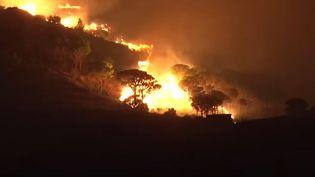 Un violent feu de forêt s'est déclaré jeudi 17 septembre vers 21h45 à Cerbère (Pyrénées-Orientales). (YOUTUBE / TRAMUNTANA)