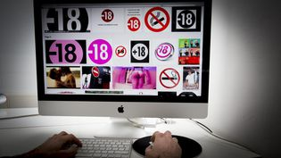 Près de9% des 14-24 ans regardent des images pornographiques au moins une fois par jour et 5% plusieurs fois par jour. (MAXPPP)