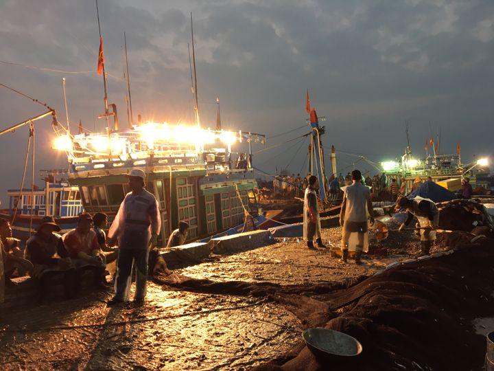 L'arrivée des bateaux de pêche vietnamien en Mer de Chine du sud sur l'île vietnamienne de Ly Son. (RADIO FRANCE / DOMINIQUE ANDRE)
