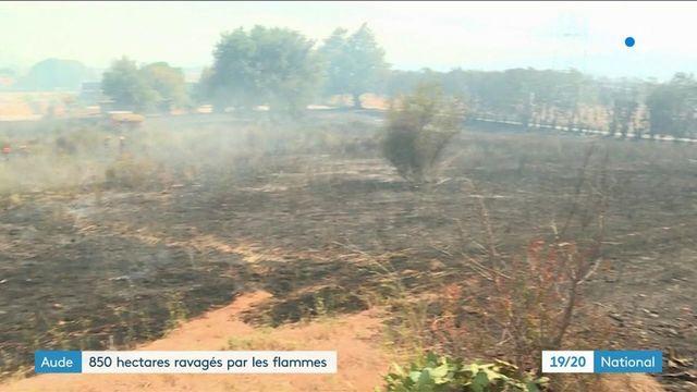 Aude : le feu a ravagé 850 hectares de forêt