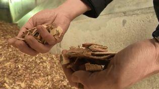 Une entreprise utilise du bois, qui une fois broyé, donne un combustible renouvelable. (FRANCE 2)