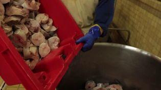 La soupe de poisson est excellente pour la santé. Mais que compose ce plat original ? (France 3)