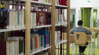 Dans une bibliothèque, à Pornic (Loire-Atlantique), en septembre 2013. (JACQUES LOIC / PHOTONONSTOP / AFP)