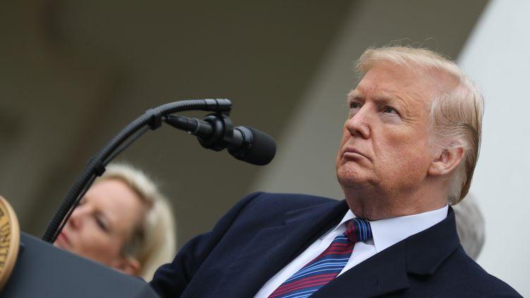 Le président américain Donald Trump à la Maison Blanche, le 4 janvier 2019. (ALEX EDELMAN / AFP)