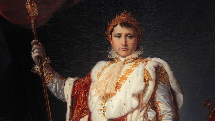 L'Empereur Napoléon par François Gérard (Musée National du Château de Fontainebleau). (MANUEL COHEN / AFP)