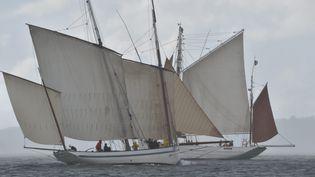Les fêtes maritimes de Brest (Finistère) ont ouvert leurs portes, mercredi 13 juillet 2016. (MAXPPP)