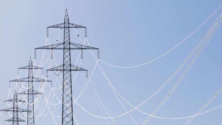 Selon Greenpeace, sur 26 fournisseurs d'éléctricté, seuls trois sont vraiment verts. (GETTY IMAGES)