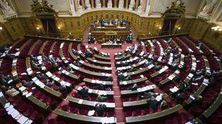 Vue générale du Sénat, à Paris, le 13 novembre 2012. (JOEL SAGET / AFP)