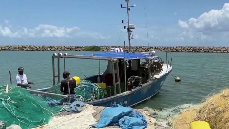 Comme en métropole, le secteur de la pêche tourne au ralenti en Outre-mer, à cause de la pandémie de coronavirus. Confinés, les clients ne sont pas au rendez-vous. (France 3)
