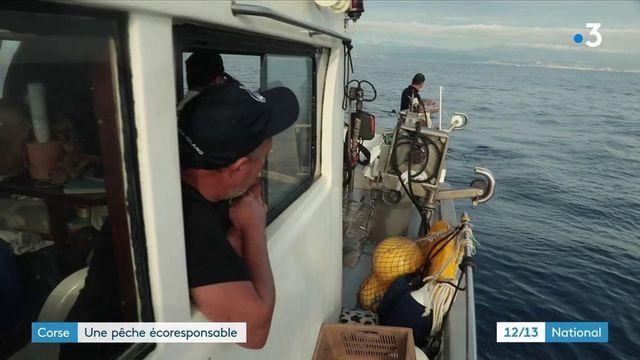 Corse : miser sur un modèle de pêche durable