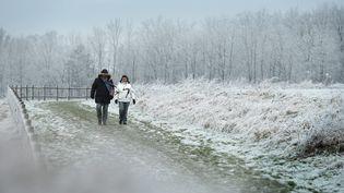 Des promeneurs près de Lille (Nord), le 1er janvier 2017. (MAXPPP)