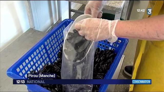 Alimentation : des huîtres en distributeurs automatiques