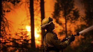 Un pompier venu de Sacramento dans le brasier, le 26 août 2013 en Californie (Etats-Unis). (MAX WHITTAKER / REUTERS)
