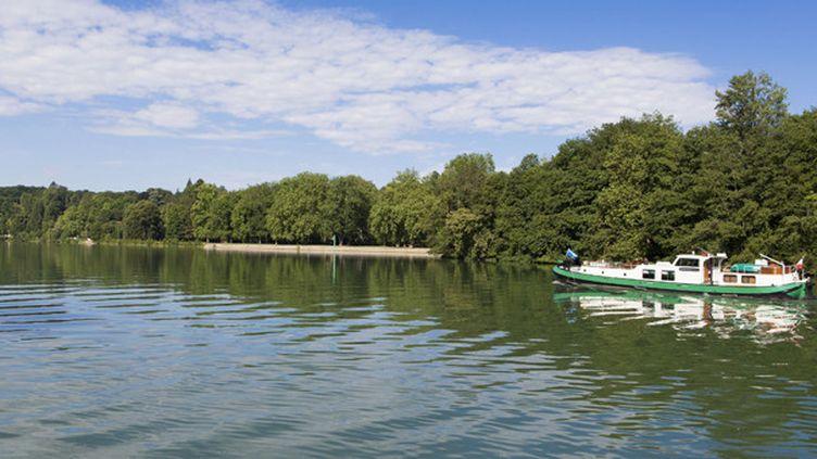 La Seine entre Samois et Hericy  (Patrick Escudero/AFP)