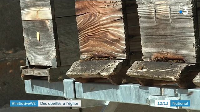 Cantal : des abeilles s'installent sur la cathédrale