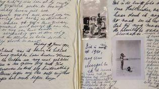 Des pages du journal d'Anne Frank  (Andreas Arnold / DPA)