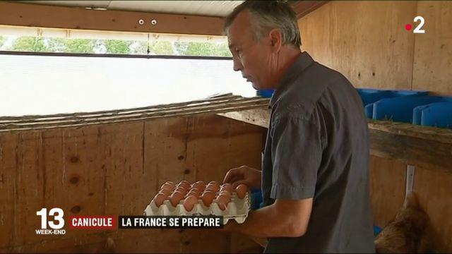 Canicule : la France se prépare à un deuxième épisode de chaleur
