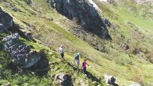 Les amoureux de la montagne profitent du déconfinement pour arpenter les sentiers, notamment dans les Vosges.  (CAPTURE ECRAN FRANCE 2)