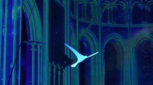 Spectacle :voyage à travers le temps lumineux et immersif à la cathédrale de Lyon (FRANCE 2)