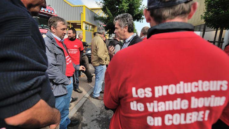 (Pour Pierre Hinart, les industriels, sous la pression de la grande distribution, imposent un système invivable aux éleveurs © Maxppp)