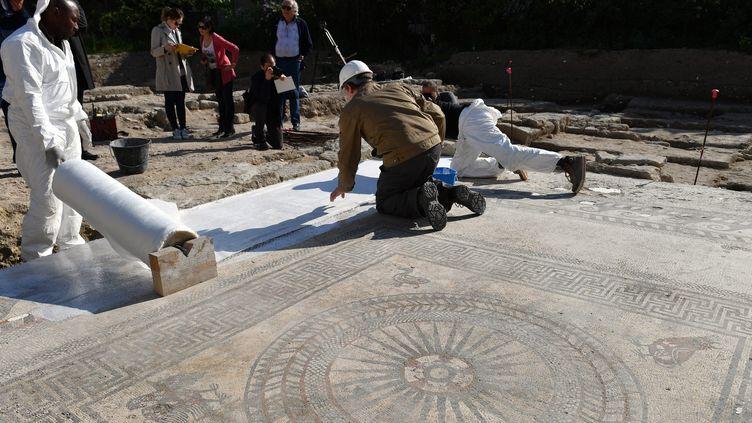 La mosaïque romaine découverte à Uzès va être déposée et transportée à Nîmes pour être protégée et sauvegardée  (Pascal Guyot / AFP)