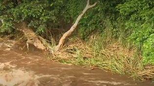 Dimanche 8 septembre en Martinique, trois jeunes ont été emportés par les eaux d'une rivière. (CAPTURE ECRAN FRANCE 2)