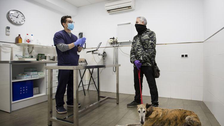 Face à la crise du coronavirus, les vétérinaires se mobilisent également, avec l'envoi de matériel à destination des hôpitaux. (JAIME REINA / AFP)