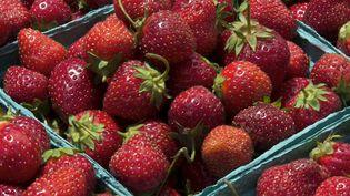 Quelque 225 résidus ont été découverts dans les fraises, da L (PAUL J. RICHARDS / AFP)
