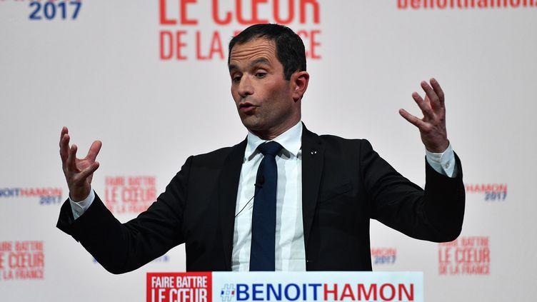 Benoît Hamon, en meeting à Montpellier (Hérault), le 10 janvier 2017. (PASCAL GUYOT / AFP)