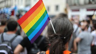Le drapeau LGBT lors de la gay pride à Nantes le 14 juin 2014. (JEAN-SEBASTIEN EVRARD / AFP)