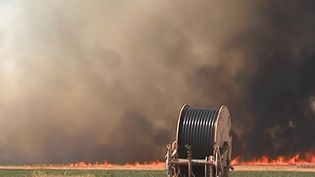 Deux-Sèvres : menace d'incendies avec le début des moissons (France 2)