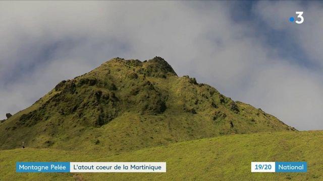 Martinique : à la découverte de la Montagne Pelée, volcan magnifique et capricieux