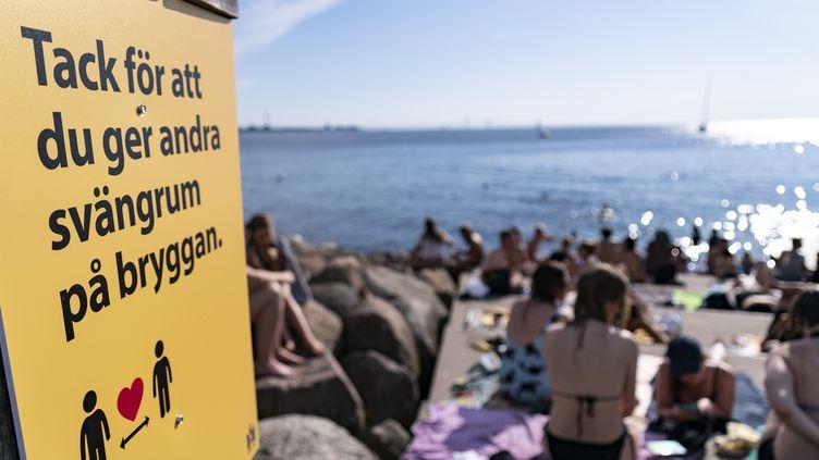 Des Suédois prennent le soleil alors que les températures dépassent les 30 °C à Malmö, le 25 juin 2020. (JOHAN NILSSON / TT NEWS AGENCY / AFP)