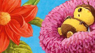 """Extrait de la couverture de """"L'herbier des Drôles de Petites Bêtes""""  (Antoon Krings / Gallimard Jeunesse / Giboulées)"""