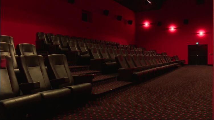A Garat, en Charente, le cinéma Mégémara cumule 162 jours de fermeture. (E.Merlo / France Télévisions)