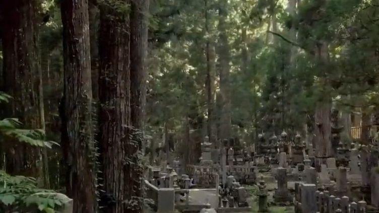"""Pour le dernier épisode de son feuilleton consacré aux """"terres éternelles"""", France 2 s'est rendue à Koyasan, dans le sud du Japon. (CAPTURE ECRAN FRANCE 2)"""