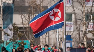 Le drapeau nord-coréen au village olympique de Pyeongchang (Corée du Sud), le 8 février 2018. (ED JONES / AFP)