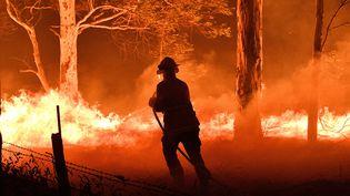Un pompier tente de maîtriser un incendie, le 31 décembre 2019 à Nowra (Australie). (SAEED KHAN / AFP)