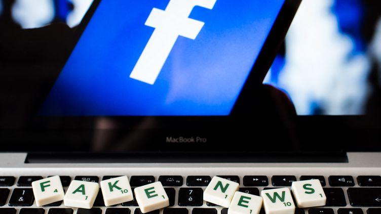 Le CSA demande aux réseaux sociaux d'améliorer la transparence dans les informations transmises concernant leur lutte contre les infox. (Photo d'illustration) (RICCARDO MILANI / HANS LUCAS / AFP)